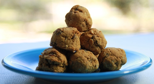 Coconut_Flour_Oatmeal_Raisin_Cookie_Balls_recipe_photo