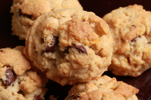 Gluten Free Coconut Dishpan Cookies