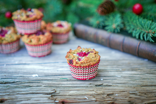 Holiday Cranberry Coconut Flour Muffins Photo