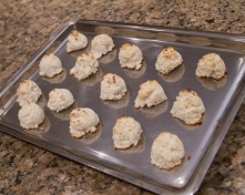 Macaroons from Coconut Milk Pulp