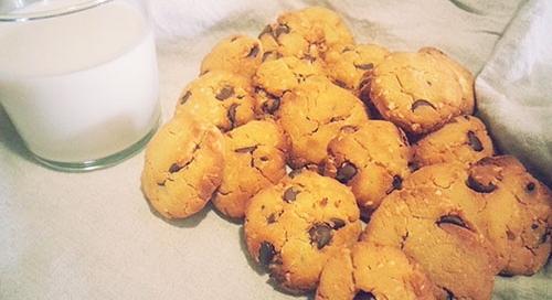 Gluten Free Coconut Flour Chocolate Chip Cookies